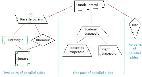 Relationships among special quadrilaterals