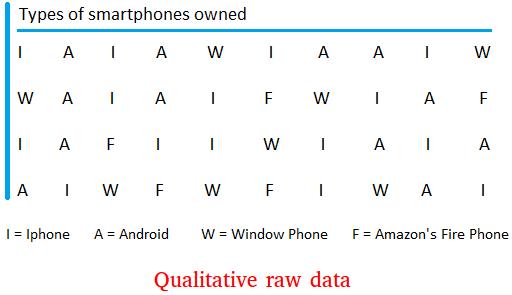 Qualitative raw data